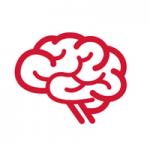 Scenographik - cerveau